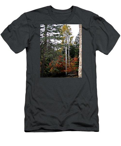 Mountain Autumn Men's T-Shirt (Athletic Fit)