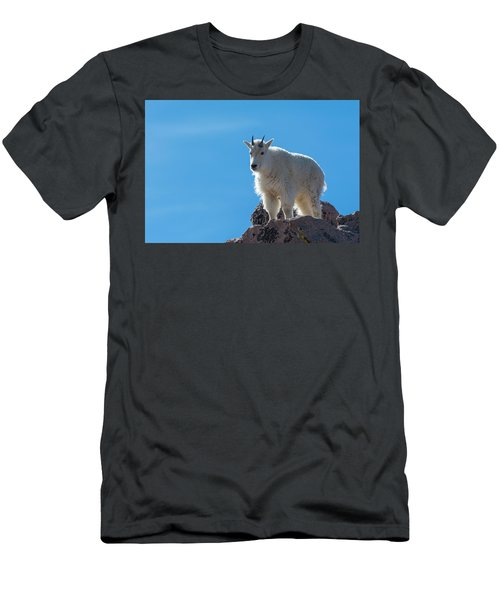 Men's T-Shirt (Athletic Fit) featuring the photograph Mountain Goat 4 by Gary Lengyel