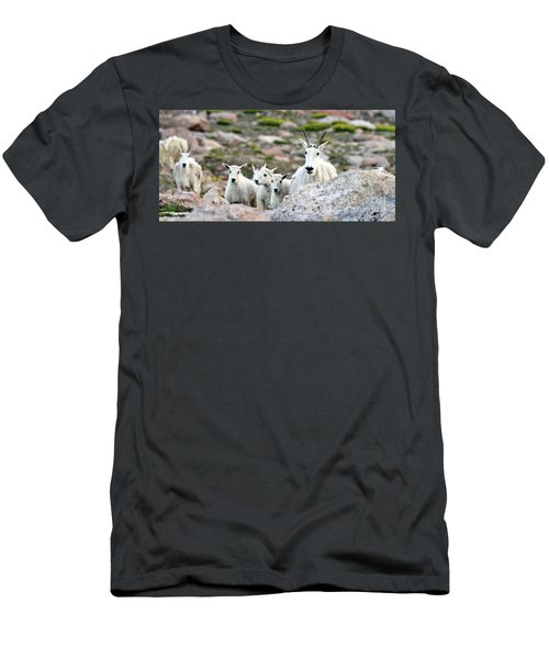 Men's T-Shirt (Slim Fit) featuring the photograph Mountain Goat Family Panorama by Scott Mahon