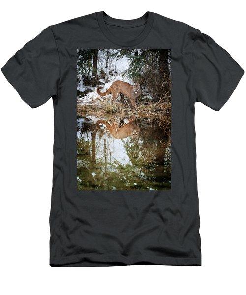 Mountain Lion Reflection Men's T-Shirt (Athletic Fit)