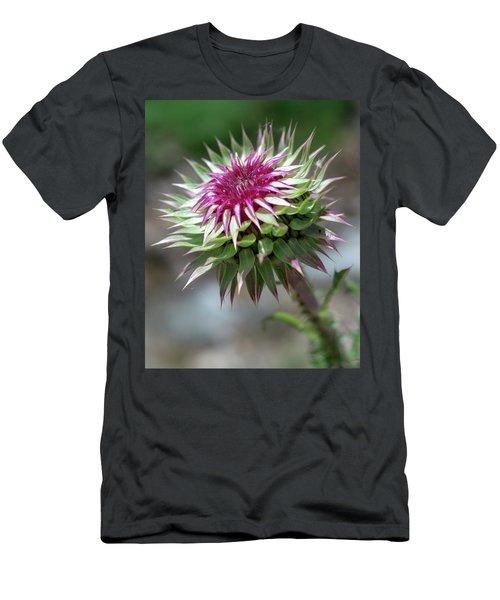 Mountain Thistle Men's T-Shirt (Athletic Fit)