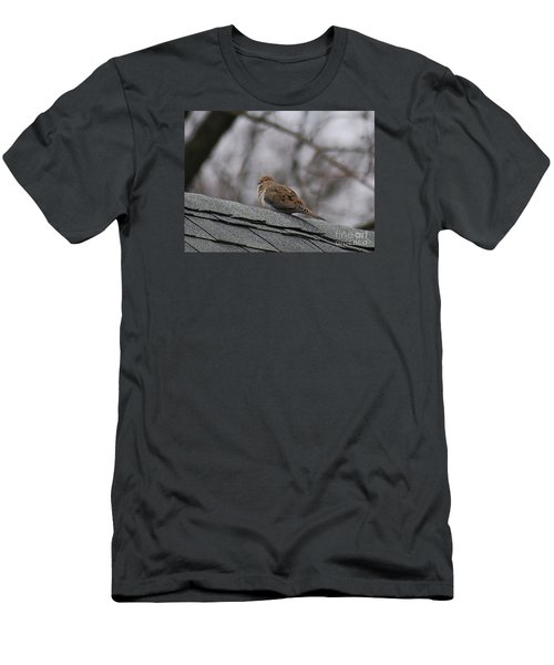 Mourning Dove 20120318_1a Men's T-Shirt (Slim Fit) by Tina Hopkins