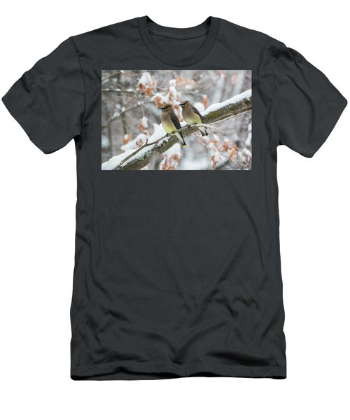 Mr. And Mrs. Cedar Wax Wing Men's T-Shirt (Athletic Fit)