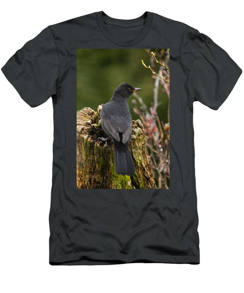 Mr Birdy Men's T-Shirt (Slim Fit)