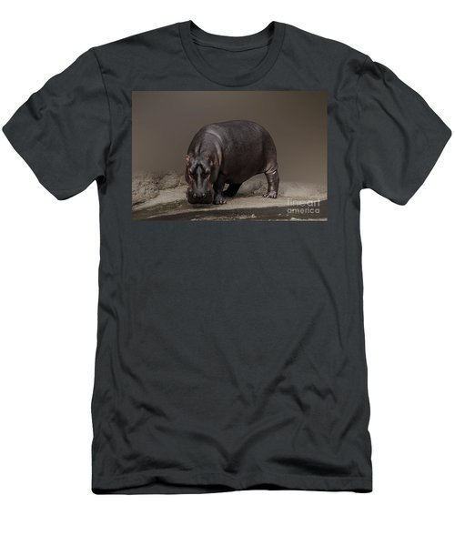 Mr. Hippo Men's T-Shirt (Athletic Fit)