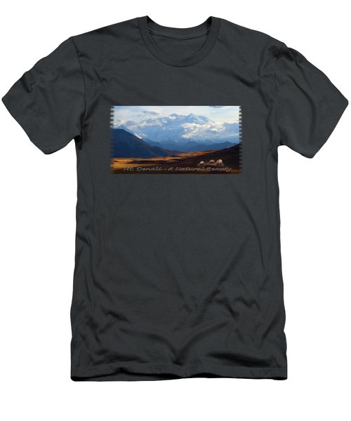 Mt. Denali National Park Men's T-Shirt (Athletic Fit)