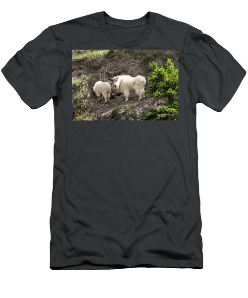 Mt Goat Outing Men's T-Shirt (Athletic Fit)