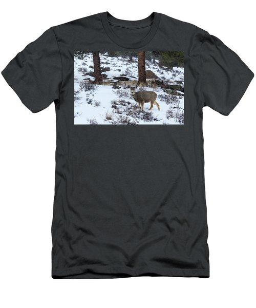 Mule Deer - 8922 Men's T-Shirt (Athletic Fit)