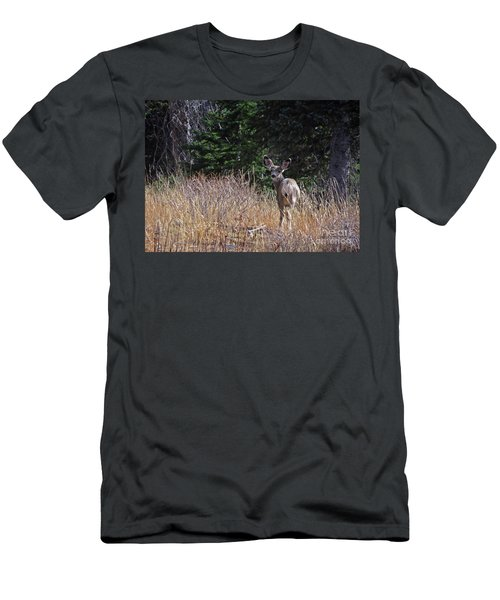 Mule Deer In Utah Men's T-Shirt (Athletic Fit)