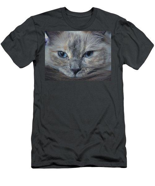 Mustachioed Cat Men's T-Shirt (Slim Fit) by Karen Stahlros