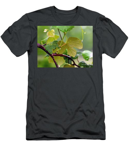 My Grapvine Men's T-Shirt (Athletic Fit)