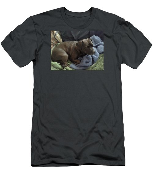 Men's T-Shirt (Slim Fit) featuring the photograph My Puppy Bella by Jewel Hengen