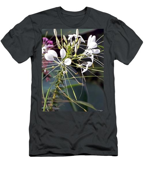 Nature's Design Men's T-Shirt (Slim Fit) by Lauren Radke