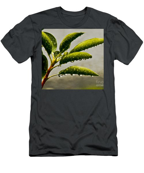 Early Morning Raindrops Men's T-Shirt (Slim Fit) by Carol F Austin