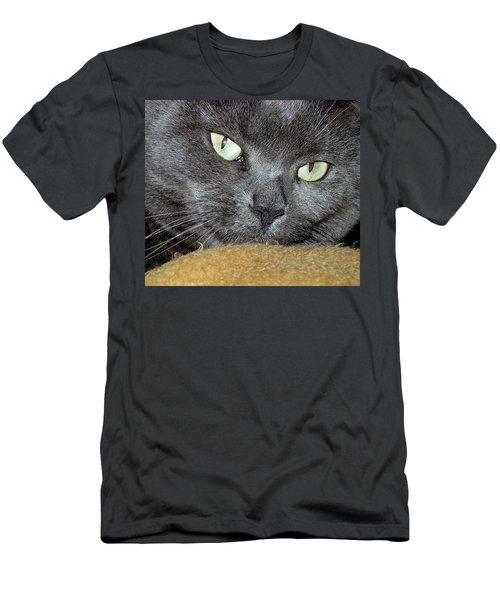 My Nellie-belle's Catitude Men's T-Shirt (Athletic Fit)