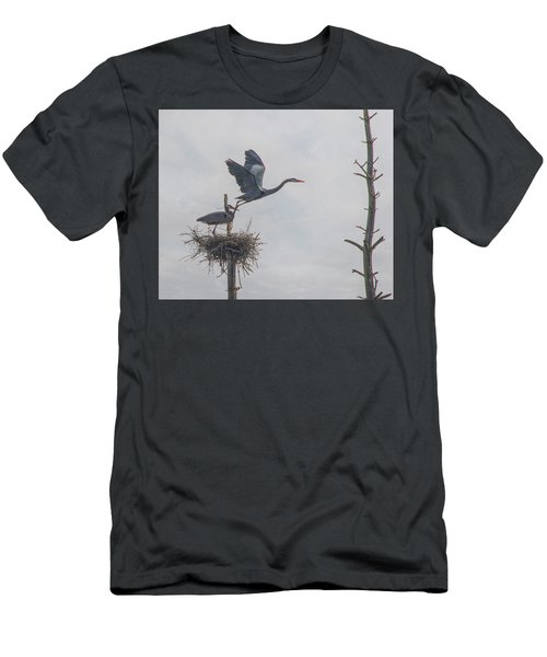 Nesting Great Blue Heron Men's T-Shirt (Athletic Fit)