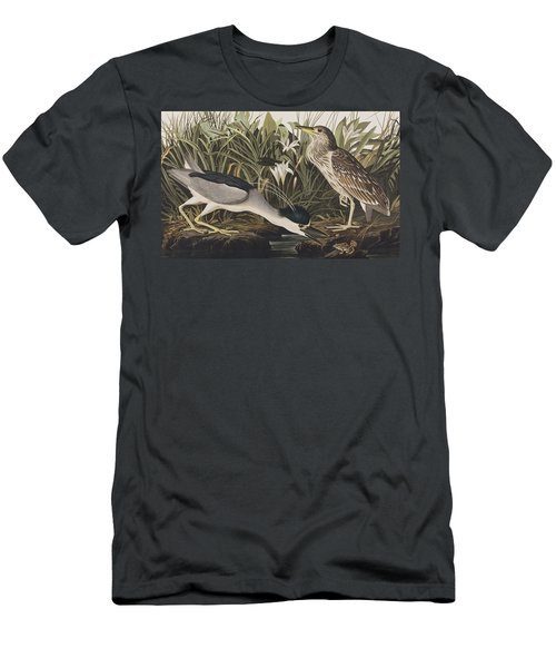 Night Heron Or Qua Bird Men's T-Shirt (Athletic Fit)