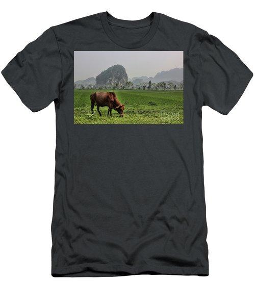 Ninh Binh Reserve  Men's T-Shirt (Slim Fit) by Chuck Kuhn