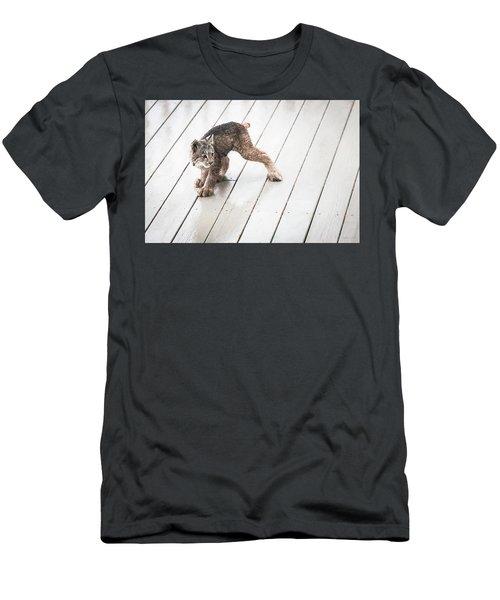 Ninja Lynx Kitty Men's T-Shirt (Athletic Fit)