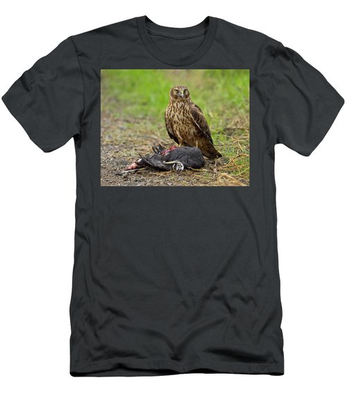 Men's T-Shirt (Slim Fit) featuring the photograph Northern Harrier by Doug Herr
