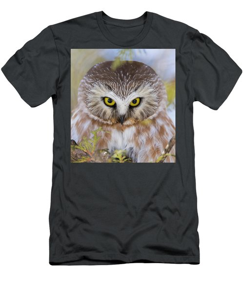 Men's T-Shirt (Slim Fit) featuring the photograph Northern Saw-whet Owl Portrait by Mircea Costina Photography