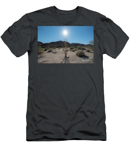 Ocotillo Glow Men's T-Shirt (Athletic Fit)