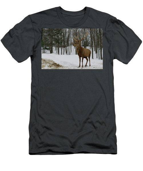 Of Course Men's T-Shirt (Athletic Fit)