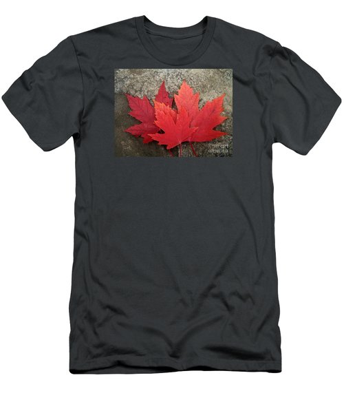 Oh Canada Men's T-Shirt (Slim Fit) by Reb Frost