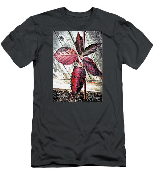 Old And  Faded Men's T-Shirt (Athletic Fit)