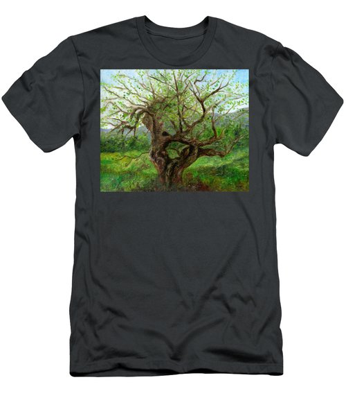 Old Apple Tree Men's T-Shirt (Athletic Fit)