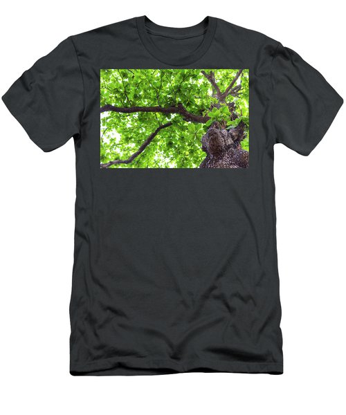 Men's T-Shirt (Athletic Fit) featuring the photograph Old Green Tree by Jingjits Photography