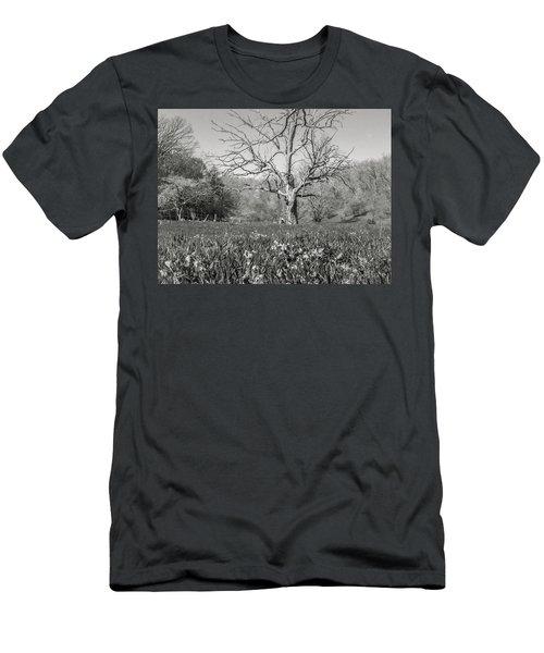 Old Oak Men's T-Shirt (Athletic Fit)