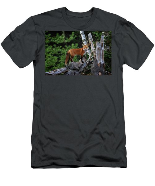 On The Lookout Men's T-Shirt (Slim Fit) by Gary Hall