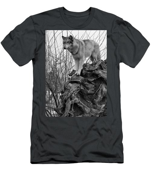 Men's T-Shirt (Slim Fit) featuring the photograph On Top by Shari Jardina