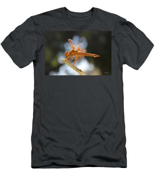 Orange Dragonfly Men's T-Shirt (Athletic Fit)