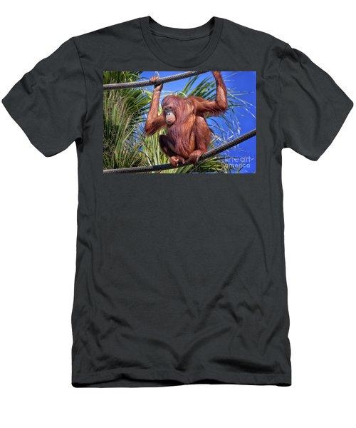 Orangutan On Ropes Men's T-Shirt (Athletic Fit)
