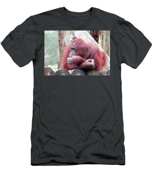 Orangutang Contemplating Men's T-Shirt (Slim Fit) by Rosalie Scanlon