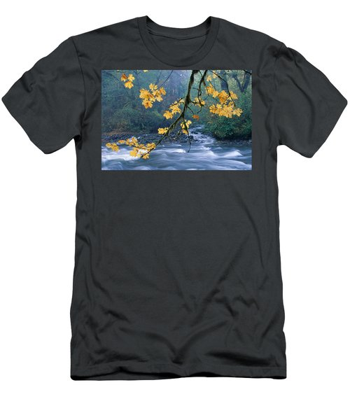 Oregon, Cascade Mountain Men's T-Shirt (Slim Fit) by Carl Shaneff - Printscapes