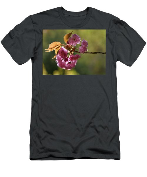 Ornamental Cherry Blossoms - Men's T-Shirt (Athletic Fit)