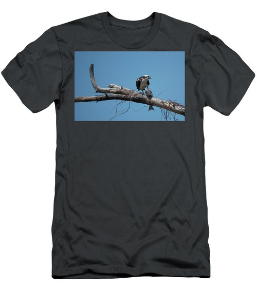 Osprey And Fish Men's T-Shirt (Athletic Fit)