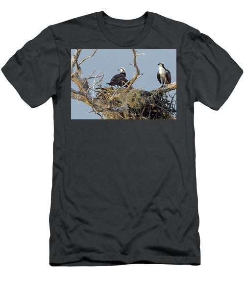 Osprey Family Men's T-Shirt (Athletic Fit)