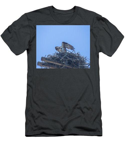 Osprey Nest II Men's T-Shirt (Slim Fit) by Billie-Jo Miller