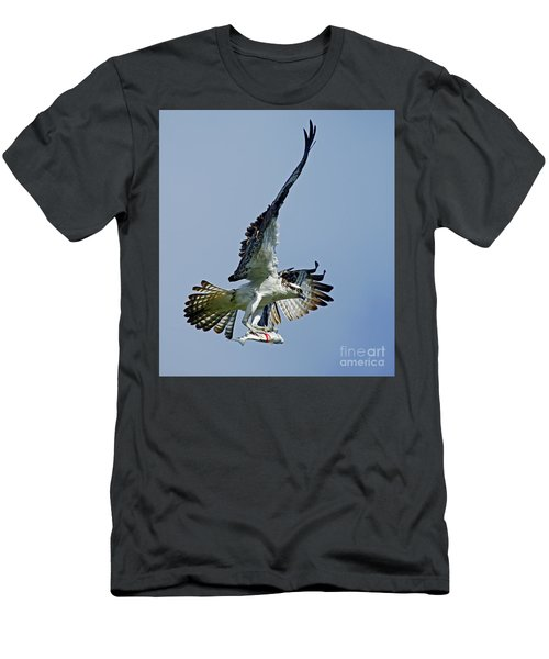 Osprey Success Men's T-Shirt (Slim Fit) by Larry Nieland