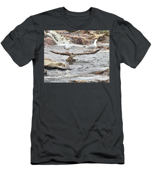 Men's T-Shirt (Athletic Fit) featuring the photograph Osprey Takes Fish From Gulls by Debbie Stahre