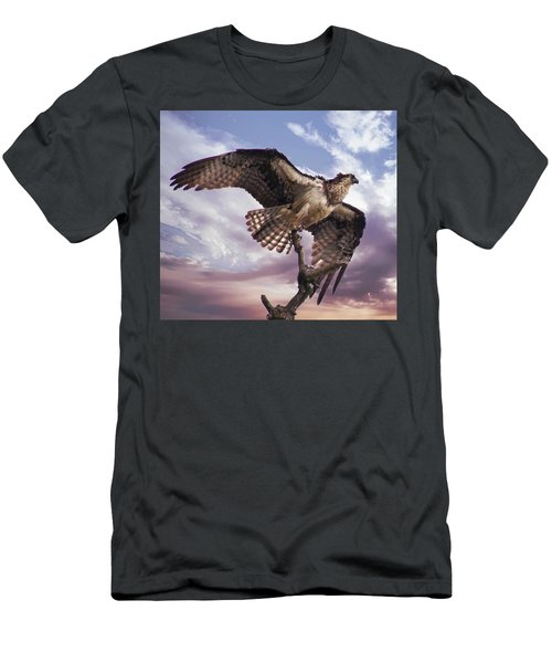 Osprey Wing Men's T-Shirt (Athletic Fit)