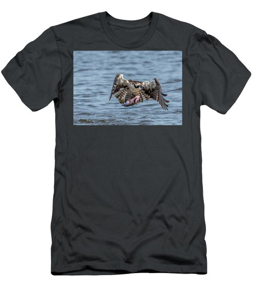 Osprey With Catch 9108 Men's T-Shirt (Athletic Fit)