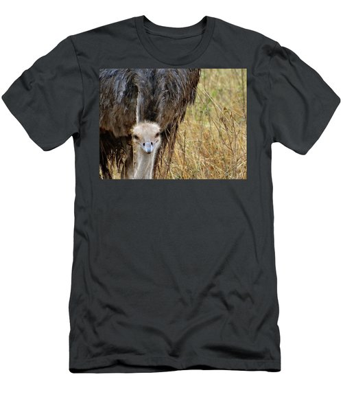 Ostrich In The Grass - Head Shot Men's T-Shirt (Athletic Fit)