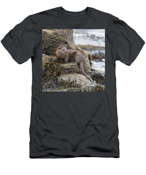 Otter Beside Loch Men's T-Shirt (Athletic Fit)