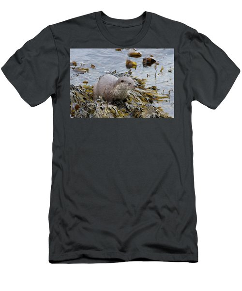 Otter On Seaweed Men's T-Shirt (Athletic Fit)
