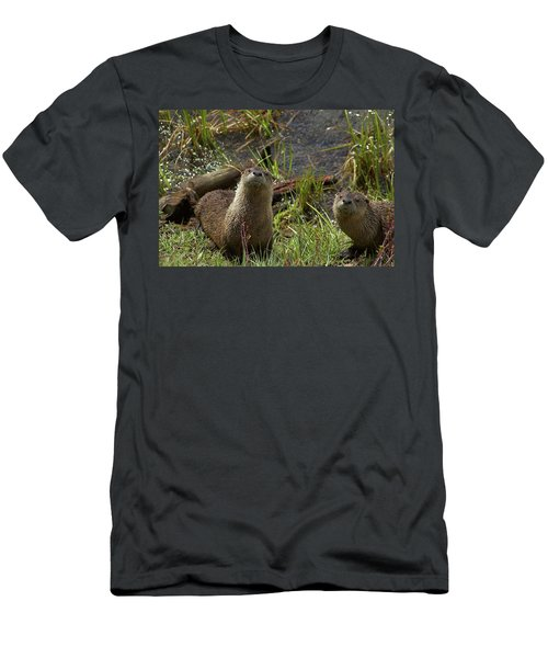 Otters Men's T-Shirt (Athletic Fit)